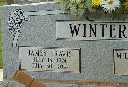 WINTER, JAMES TRAVIS - Itawamba County, Mississippi | JAMES TRAVIS WINTER - Mississippi Gravestone Photos