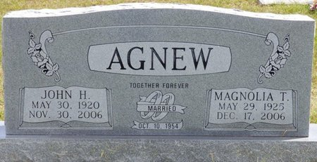 TYSON AGNEW, MAGNOLIA - Lee County, Mississippi | MAGNOLIA TYSON AGNEW - Mississippi Gravestone Photos