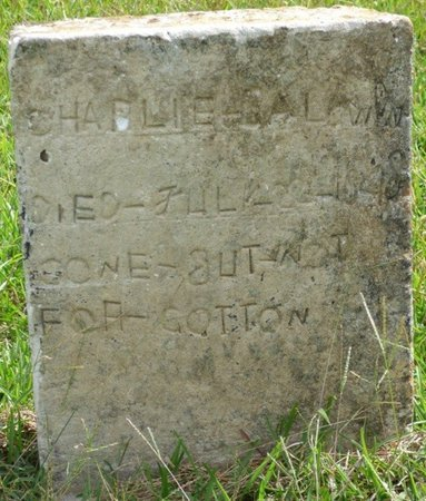 BALDWIN, CHARLIE - Lee County, Mississippi   CHARLIE BALDWIN - Mississippi Gravestone Photos