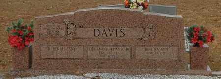 DAVIS, DELANO ROLLAND JR - Marion County, Mississippi   DELANO ROLLAND JR DAVIS - Mississippi Gravestone Photos