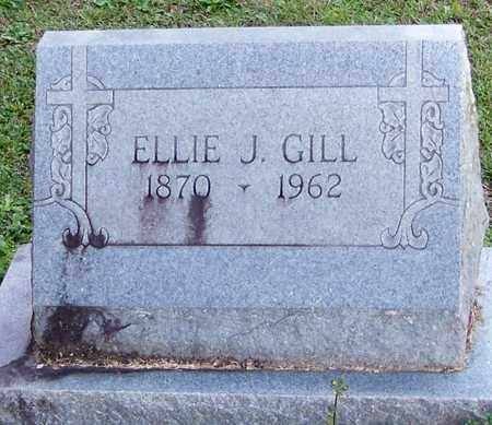 GILL, ELLIE J - Marion County, Mississippi   ELLIE J GILL - Mississippi Gravestone Photos