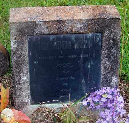 HUDSON, TROY ANTHONY - Marion County, Mississippi   TROY ANTHONY HUDSON - Mississippi Gravestone Photos