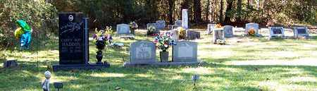 *KENDRICK CEMETERY VIEW, . - Marion County, Mississippi   . *KENDRICK CEMETERY VIEW - Mississippi Gravestone Photos