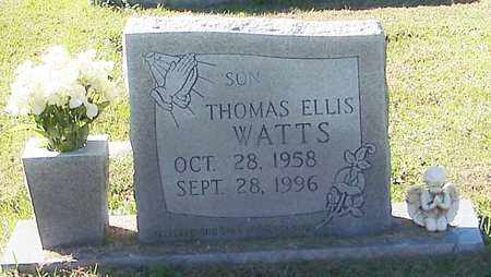 WATTS, THOMAS ELLIS - Marion County, Mississippi | THOMAS ELLIS WATTS - Mississippi Gravestone Photos