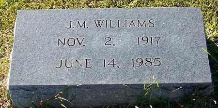 WILLIAMS, J M - Marion County, Mississippi | J M WILLIAMS - Mississippi Gravestone Photos