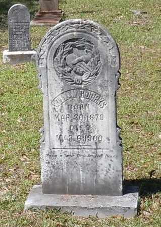 BURKS, WILLIAM C - Pearl River County, Mississippi | WILLIAM C BURKS - Mississippi Gravestone Photos