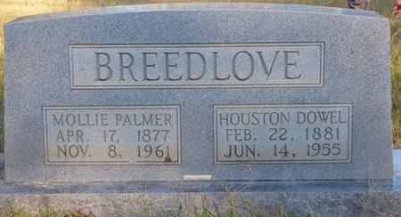 BREEDLOVE, MOLLIE - Prentiss County, Mississippi | MOLLIE BREEDLOVE - Mississippi Gravestone Photos
