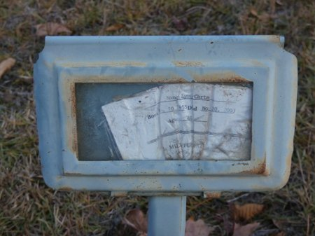 CARTER, NANCY LYNN - Prentiss County, Mississippi | NANCY LYNN CARTER - Mississippi Gravestone Photos