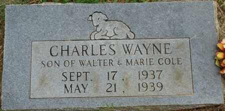 COLE, CHARLES WAYNE - Prentiss County, Mississippi | CHARLES WAYNE COLE - Mississippi Gravestone Photos