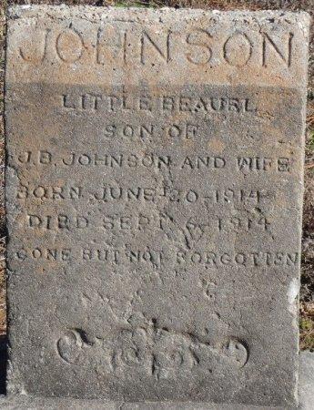 JOHNSON, LITTLE BEAURL - Prentiss County, Mississippi | LITTLE BEAURL JOHNSON - Mississippi Gravestone Photos