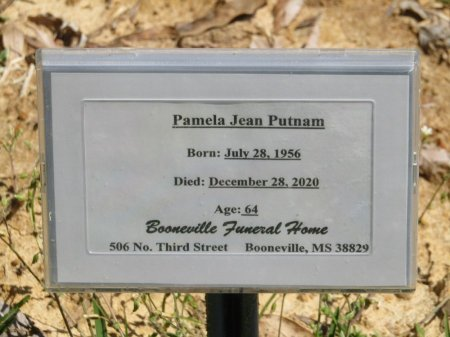 PUTNAM, PAMELA JEAN - Prentiss County, Mississippi | PAMELA JEAN PUTNAM - Mississippi Gravestone Photos