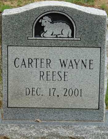 REESE, CARTER WAYNE - Prentiss County, Mississippi | CARTER WAYNE REESE - Mississippi Gravestone Photos