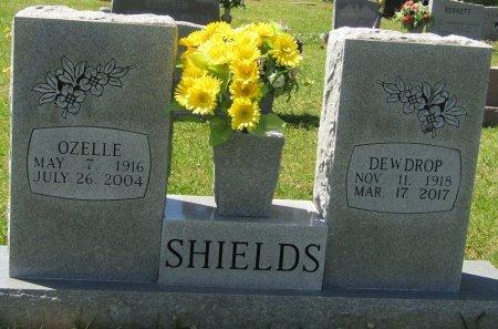 SHIELDS, ANN DEWDROP - Prentiss County, Mississippi   ANN DEWDROP SHIELDS - Mississippi Gravestone Photos