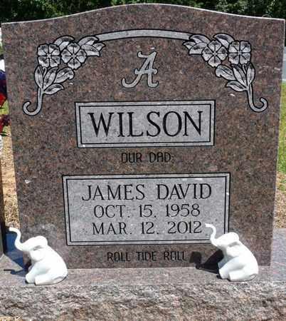 WILSON, JAMES DAVID - Prentiss County, Mississippi | JAMES DAVID WILSON - Mississippi Gravestone Photos