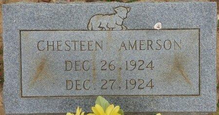 AMERSON, CHESTEEN - Tishomingo County, Mississippi | CHESTEEN AMERSON - Mississippi Gravestone Photos