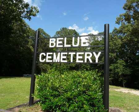 *BELUE, CEMETERY - Tishomingo County, Mississippi | CEMETERY *BELUE - Mississippi Gravestone Photos