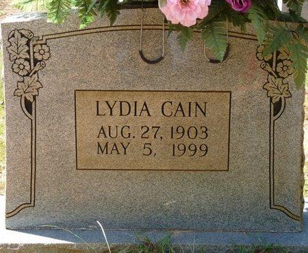 CAIN, LYDIA - Tishomingo County, Mississippi   LYDIA CAIN - Mississippi Gravestone Photos