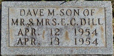 DILL, DAVE M - Tishomingo County, Mississippi | DAVE M DILL - Mississippi Gravestone Photos