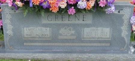 GREENE, TROY E - Tishomingo County, Mississippi | TROY E GREENE - Mississippi Gravestone Photos