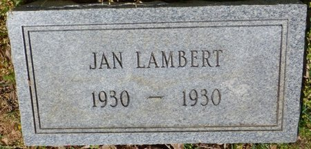 LAMBERT, JAN - Tishomingo County, Mississippi | JAN LAMBERT - Mississippi Gravestone Photos