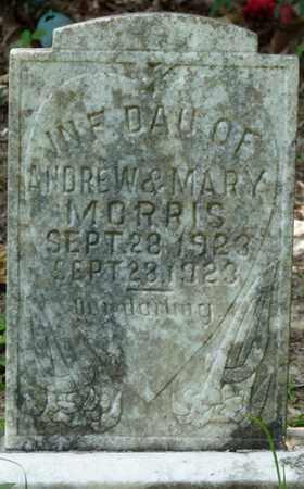 MORRIS, INFANT DAUGHTER - Tishomingo County, Mississippi | INFANT DAUGHTER MORRIS - Mississippi Gravestone Photos
