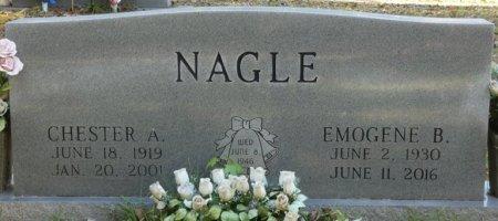 NAGLE, VIVIAN EMOGENE - Tishomingo County, Mississippi | VIVIAN EMOGENE NAGLE - Mississippi Gravestone Photos