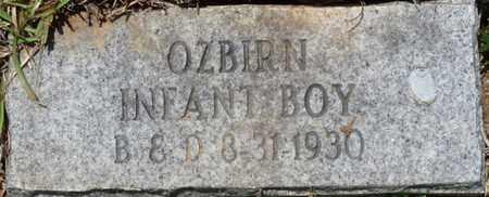 OZBIRN, INFANT SON - Tishomingo County, Mississippi | INFANT SON OZBIRN - Mississippi Gravestone Photos