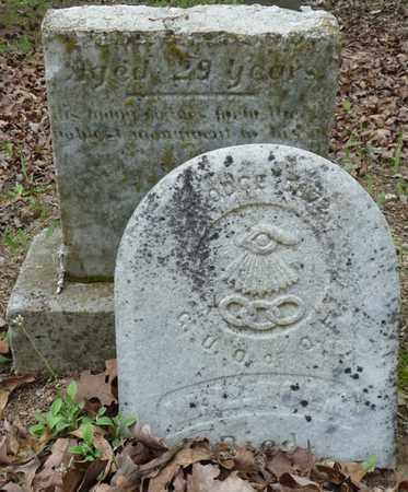 POLK, W.L. - Tishomingo County, Mississippi   W.L. POLK - Mississippi Gravestone Photos