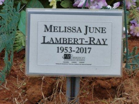 RAY, MELISSA JUNE - Tishomingo County, Mississippi | MELISSA JUNE RAY - Mississippi Gravestone Photos