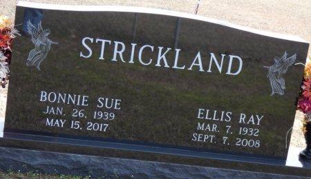 STRICKLAND, ELLIS RAY - Tishomingo County, Mississippi   ELLIS RAY STRICKLAND - Mississippi Gravestone Photos