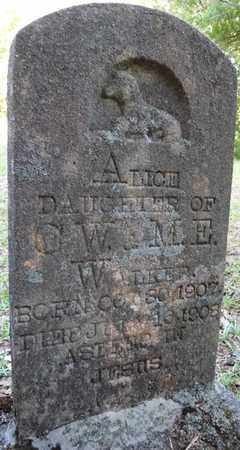 WALKER, ALICE - Tishomingo County, Mississippi | ALICE WALKER - Mississippi Gravestone Photos