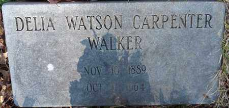 WALKER, DELIA CARPENTER - Tishomingo County, Mississippi | DELIA CARPENTER WALKER - Mississippi Gravestone Photos