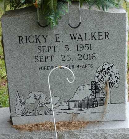 WALKER, RICKY E - Tishomingo County, Mississippi | RICKY E WALKER - Mississippi Gravestone Photos