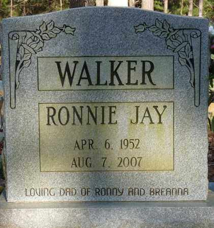 WALKER, RONNIE JAY - Tishomingo County, Mississippi | RONNIE JAY WALKER - Mississippi Gravestone Photos