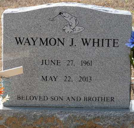 WHITE, WAYMON J - Tishomingo County, Mississippi | WAYMON J WHITE - Mississippi Gravestone Photos