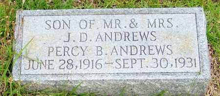 ANDREWS, PERCY B - Walthall County, Mississippi | PERCY B ANDREWS - Mississippi Gravestone Photos