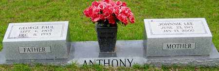 ANTHONY, JOHNNIE LEE - Walthall County, Mississippi | JOHNNIE LEE ANTHONY - Mississippi Gravestone Photos