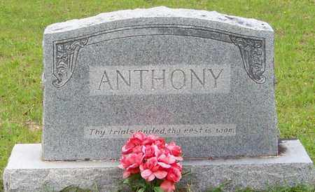 ANTHONY (HEADSTONE), OSCAR - Walthall County, Mississippi | OSCAR ANTHONY (HEADSTONE) - Mississippi Gravestone Photos