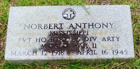 ANTHONY (VETERAN WWII), NORBERT - Walthall County, Mississippi | NORBERT ANTHONY (VETERAN WWII) - Mississippi Gravestone Photos