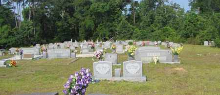*OVERVIEW, . - Walthall County, Mississippi | . *OVERVIEW - Mississippi Gravestone Photos