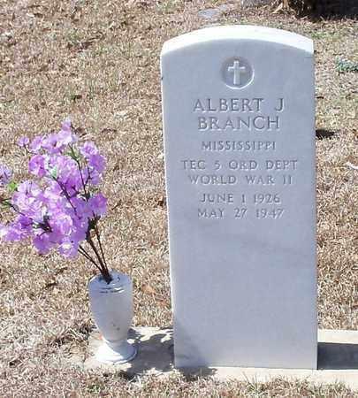 BRANCH (VETERAN WWII), ALBERT J - Walthall County, Mississippi | ALBERT J BRANCH (VETERAN WWII) - Mississippi Gravestone Photos