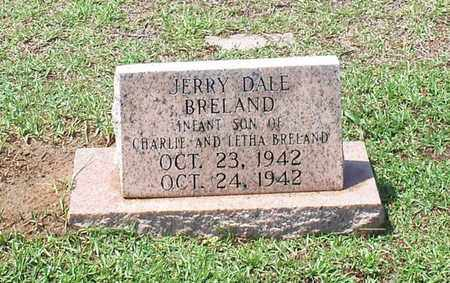 BRELAND, JERRY DALE - Walthall County, Mississippi | JERRY DALE BRELAND - Mississippi Gravestone Photos