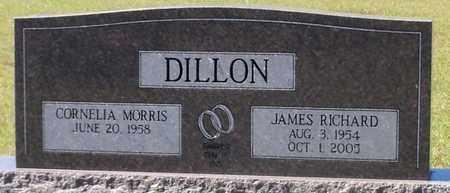 DILLON, JAMES RICHARD - Walthall County, Mississippi | JAMES RICHARD DILLON - Mississippi Gravestone Photos
