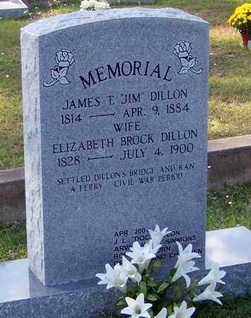 DILLON, ELIZABETH - Walthall County, Mississippi | ELIZABETH DILLON - Mississippi Gravestone Photos