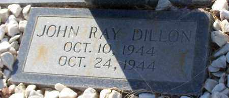 DILLON, JOHN RAY - Walthall County, Mississippi | JOHN RAY DILLON - Mississippi Gravestone Photos