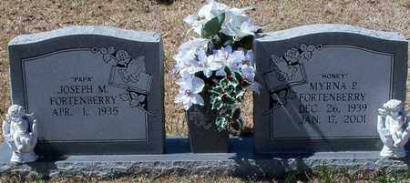 PAYNE FORTENBERRY, MYRNA P - Walthall County, Mississippi | MYRNA P PAYNE FORTENBERRY - Mississippi Gravestone Photos