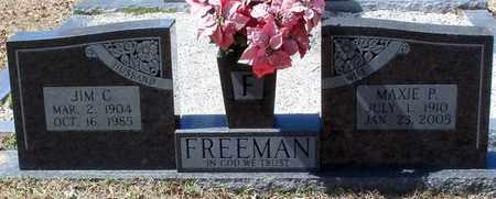 FREEMAN, MAXIE P - Walthall County, Mississippi | MAXIE P FREEMAN - Mississippi Gravestone Photos