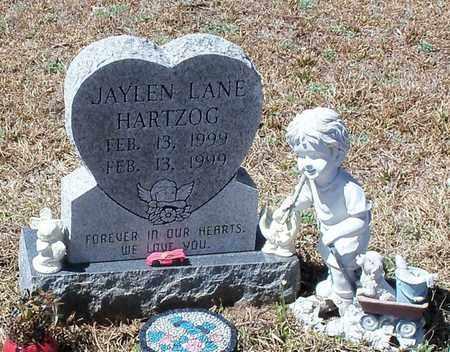 HARTZOG, JAYLEN LANE - Walthall County, Mississippi | JAYLEN LANE HARTZOG - Mississippi Gravestone Photos