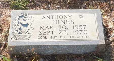 HINES, ANTHONY W - Walthall County, Mississippi | ANTHONY W HINES - Mississippi Gravestone Photos