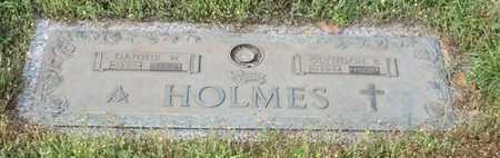 HOLMES, DANNIE W - Walthall County, Mississippi | DANNIE W HOLMES - Mississippi Gravestone Photos